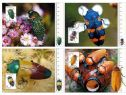 Australia Maximum Cards: APMX 533 Jewel Beetles set of 4